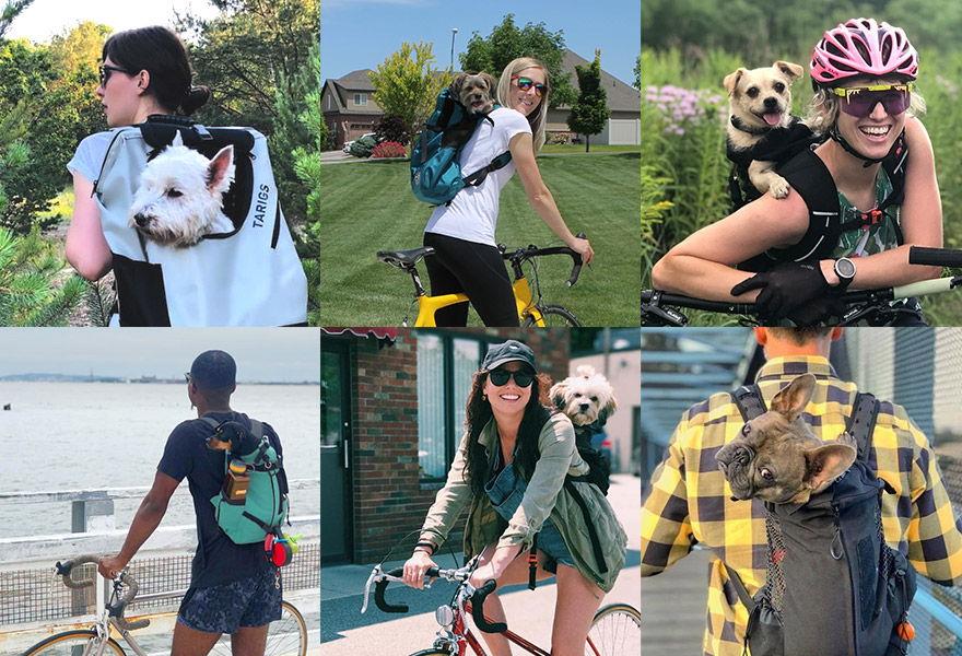 exemples de sac à dos pour chiens
